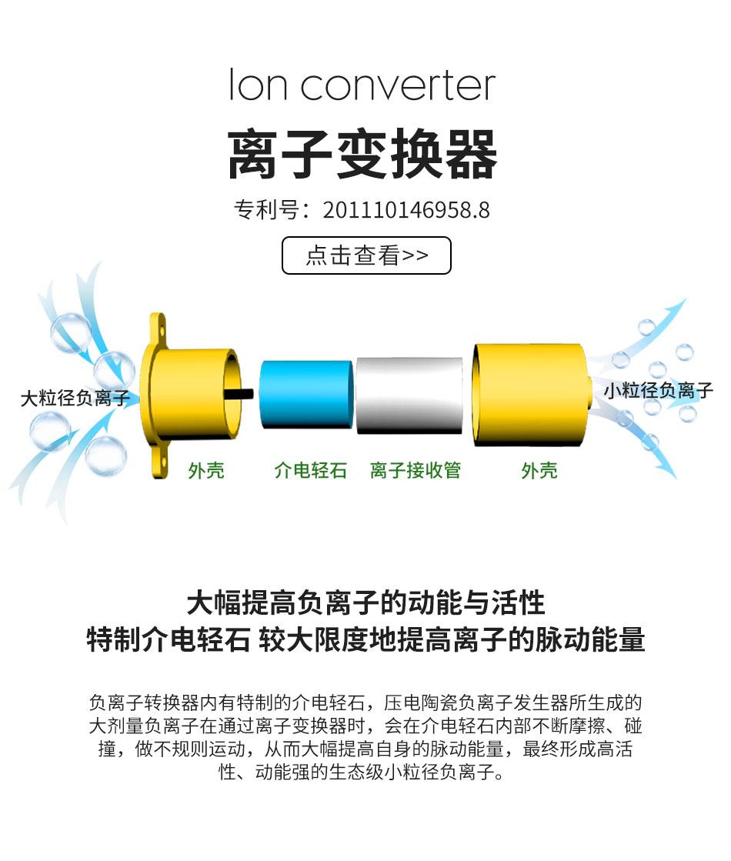 森肽基负离子专利