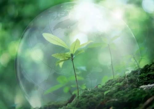 空气负氧离子受地面排斥,空气正离子则受地面吸引